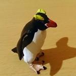 日本で唯一シュレーターペンギンに会えた場所・・・