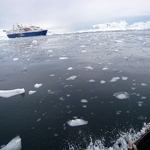 南極ツアーの種類は?